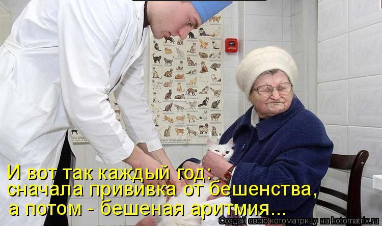 Котоматрица: И вот так каждый год: сначала прививка от бешенства, а потом - бешеная аритмия...
