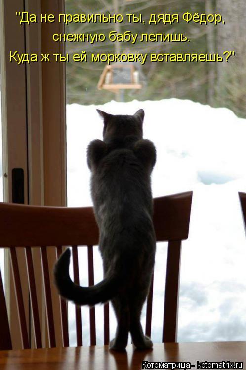 """Котоматрица: """"Да не правильно ты, дядя Фёдор, снежную бабу лепишь.  Куда ж ты ей морковку вставляешь?"""""""
