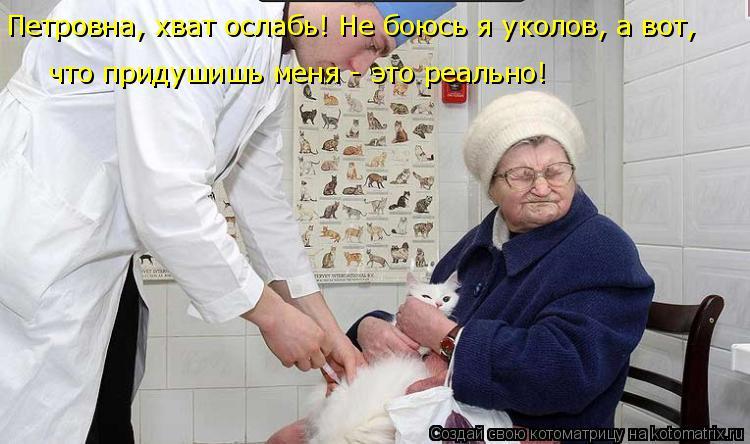 Котоматрица: Петровна, хват ослабь! Не боюсь я уколов, а вот,  что придушишь меня - это реально!