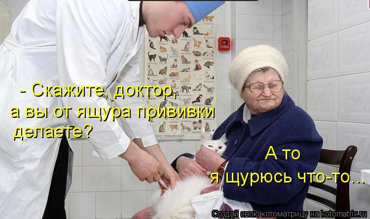 Котоматрица: - Скажите, доктор, а вы от ящура прививки  делаете?  я щурюсь что-то... А то