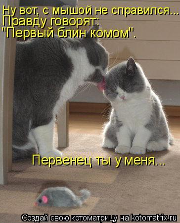 """Котоматрица: Ну вот, с мышой не справился... Правду говорят: """"Первый блин комом"""". Первенец ты у меня..."""
