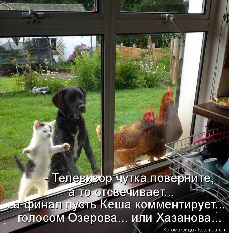 Котоматрица: - Телевизор чутка поверните, а то отсвечивает... ...а финал пусть Кеша комментирует... голосом Озерова... или Хазанова...