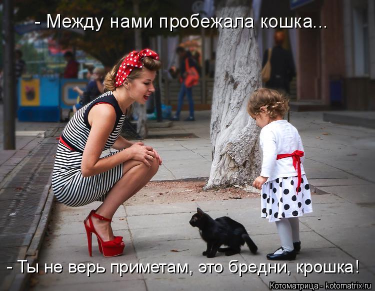 Котоматрица: - Между нами пробежала кошка... - Ты не верь приметам, это бредни, крошка!