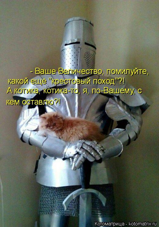 """Котоматрица: - Ваше Величество, помилуйте,  какой ещё """"крестовый поход""""?!  А котика, котика-то, я, по-Вашему, с  кем оставлю?!"""