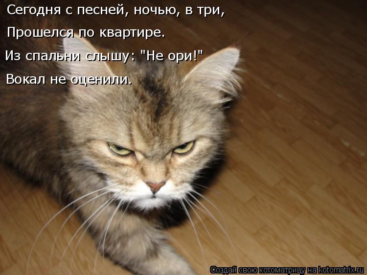 """Котоматрица: Сегодня с песней, ночью, в три, Прошелся по квартире. Из спальни слышу: """"Не ори!"""" Вокал не оценили."""