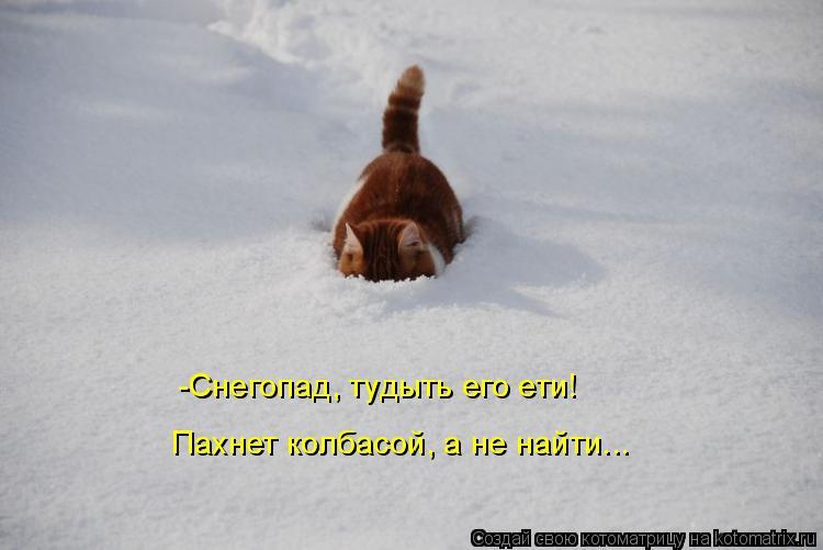 Котоматрица: -Снегопад, тудыть его ети!  Пахнет колбасой, а не найти...