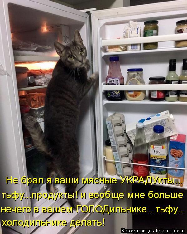 Котоматрица: Не брал я ваши мясные УКРАДУкты... тьфу...продукты! и вообще мне больше нечего в вашем ГОЛОДильнике...тьфу... холодильнике делать!