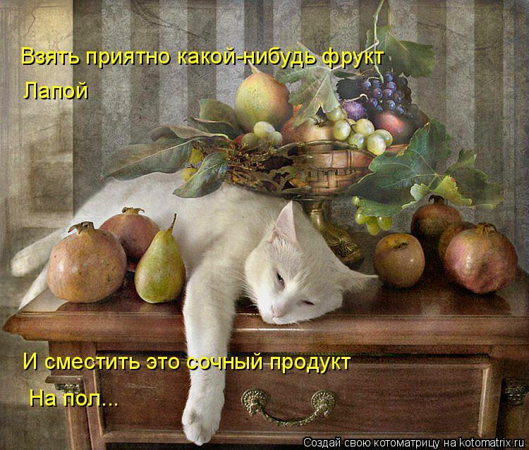 Котоматрица: Взять приятно какой-нибудь фрукт Лапой И сместить это сочный продукт На пол...