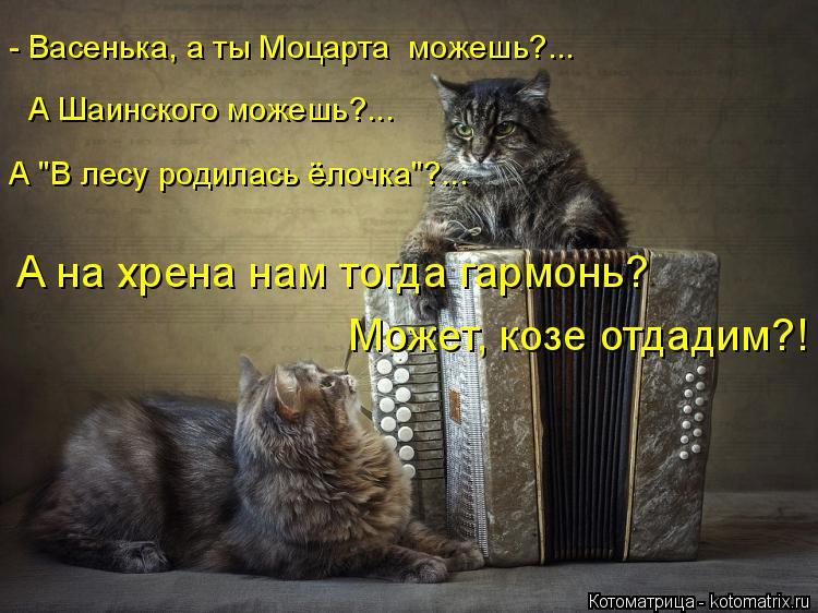 """Котоматрица: - Васенька, а ты Моцарта  можешь?... А Шаинского можешь?... А """"В лесу родилась ёлочка""""?... А на хрена нам тогда гармонь?  Может, козе отдадим?!"""