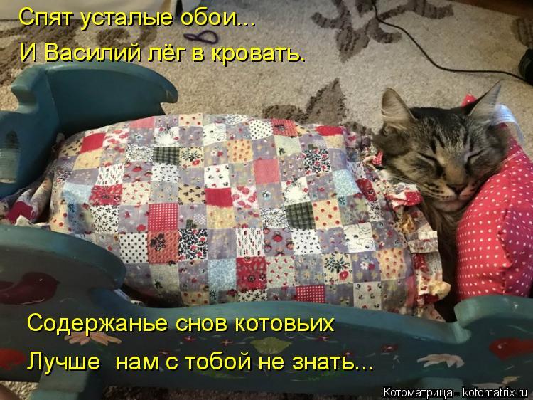 Котоматрица: Спят усталые обои... И Василий лёг в кровать. Содержанье снов котовьих Лучше  нам с тобой не знать...