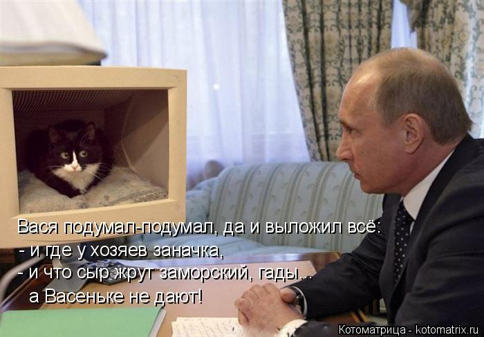 Котоматрица: Вася подумал-подумал, да и выложил всё: - и где у хозяев заначка, - и что сыр жрут заморский, гады... а Васеньке не дают!