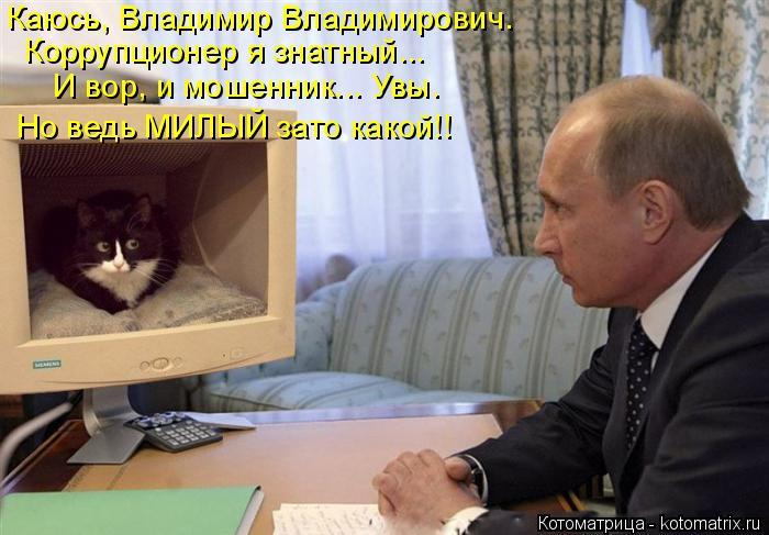Котоматрица: Каюсь, Владимир Владимирович.  Коррупционер я знатный... И вор, и мошенник... Увы. Но ведь МИЛЫЙ зато какой!!