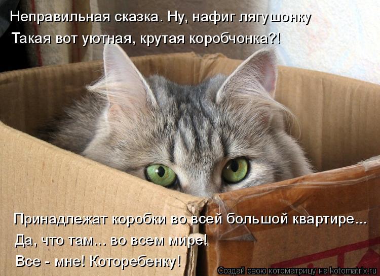 Котоматрица: Неправильная сказка. Ну, нафиг лягушонку Такая вот уютная, крутая коробчонка?! Принадлежат коробки во всей большой квартире... Да, что там... в