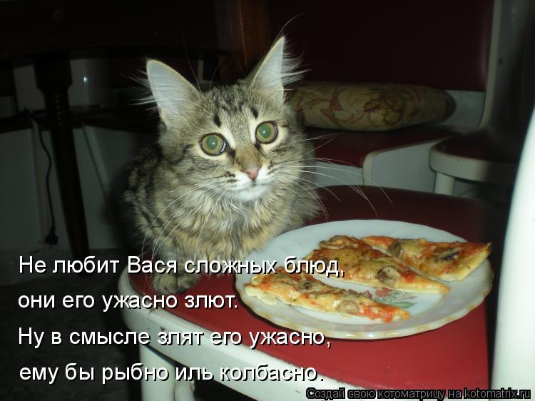 Котоматрица: они его ужасно злют. Не любит Вася сложных блюд, Ну в смысле злят его ужасно, ему бы рыбно иль колбасно.