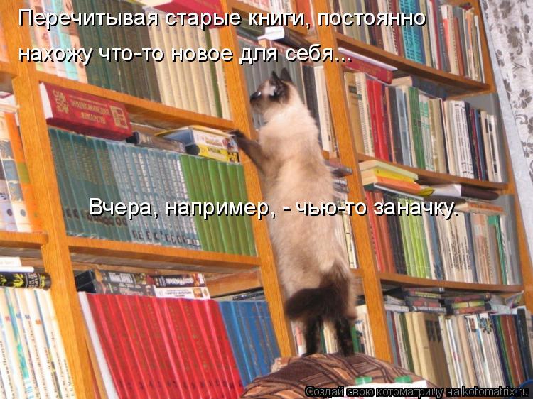 Котоматрица: Перечитывая старые книги, постоянно  нахожу что-то новое для себя... Вчера, например, - чью-то заначку.