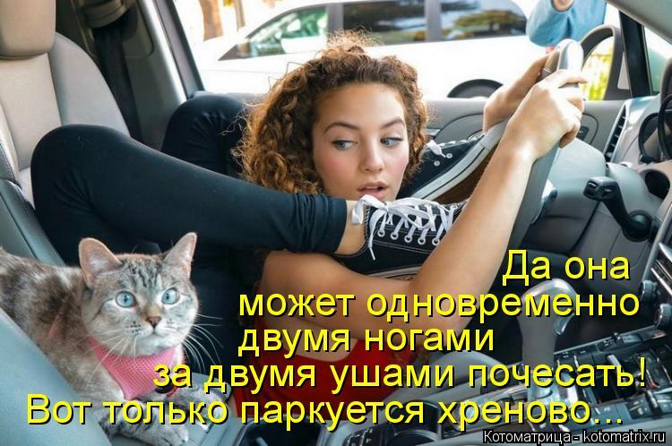 Котоматрица: Вот только паркуется хреново... за двумя ушами почесать! двумя ногами может одновременно Да она
