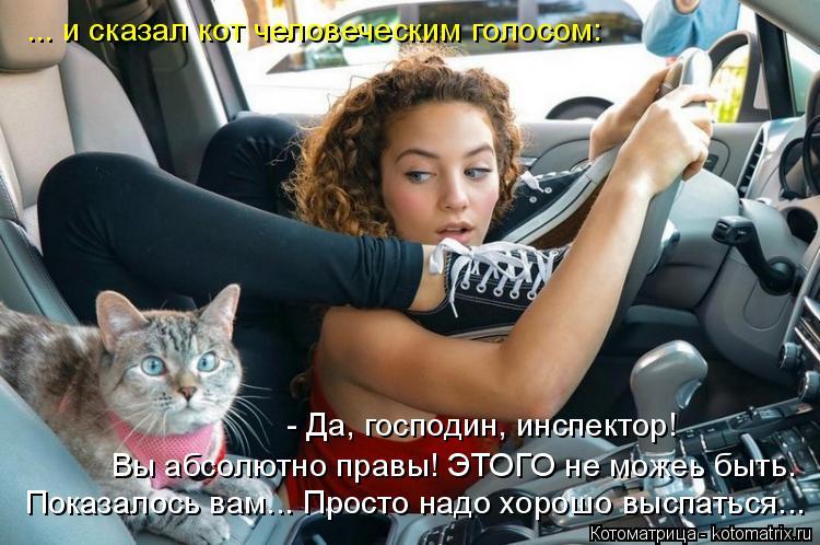 Котоматрица: ... и сказал кот человеческим голосом: Показалось вам... Просто надо хорошо выспаться... Вы абсолютно правы! ЭТОГО не можеь быть. - Да, господин,