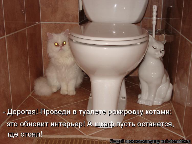 Котоматрица: - Дорогая! Проведи в туалете рокировку котами: это обновит интерьер! А шкаф пусть останется, где стоял!