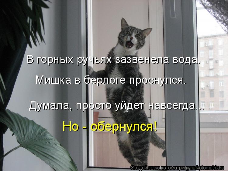 Котоматрица: В горных ручьях зазвенела вода. Думала, просто уйдет навсегда... Мишка в берлоге проснулся. Но - обернулся!