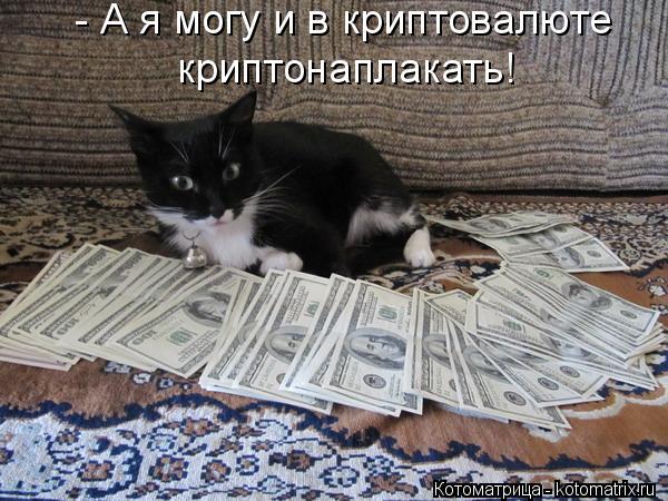 Котоматрица: - А я могу и в криптовалюте криптонаплакать!