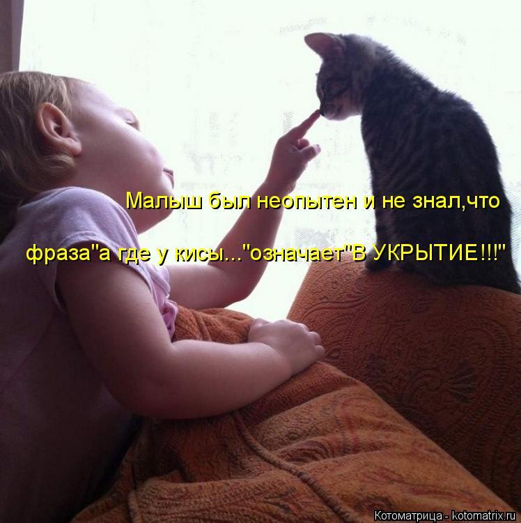 """Котоматрица: Малыш был неопытен и не знал,что фраза""""а где у кисы...""""означает""""В УКРЫТИЕ!!!"""""""