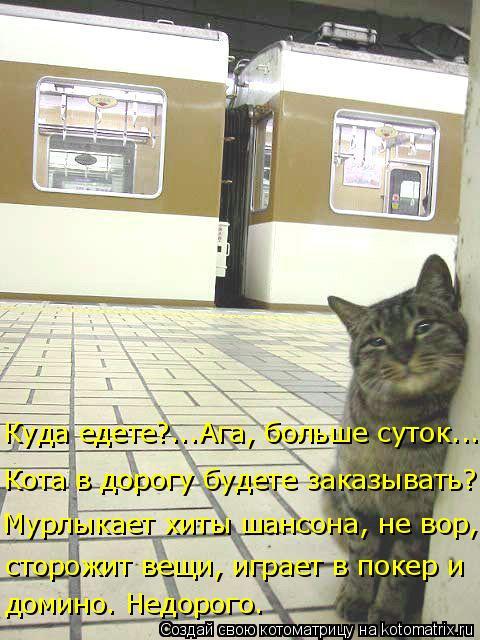 Котоматрица: Куда едете?...Ага, больше суток... Кота в дорогу будете заказывать? Мурлыкает хиты шансона, не вор,  сторожит вещи, играет в покер и  домино. Нед?