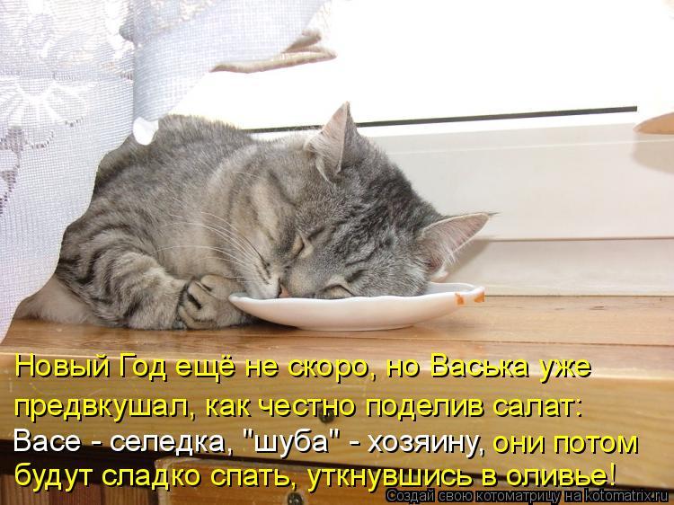 """Котоматрица: Новый Год ещё не скоро, но Васька уже  предвкушал, как честно поделив салат:  Васе - селедка, """"шуба"""" - хозяину, они потом будут сладко спать, утк?"""