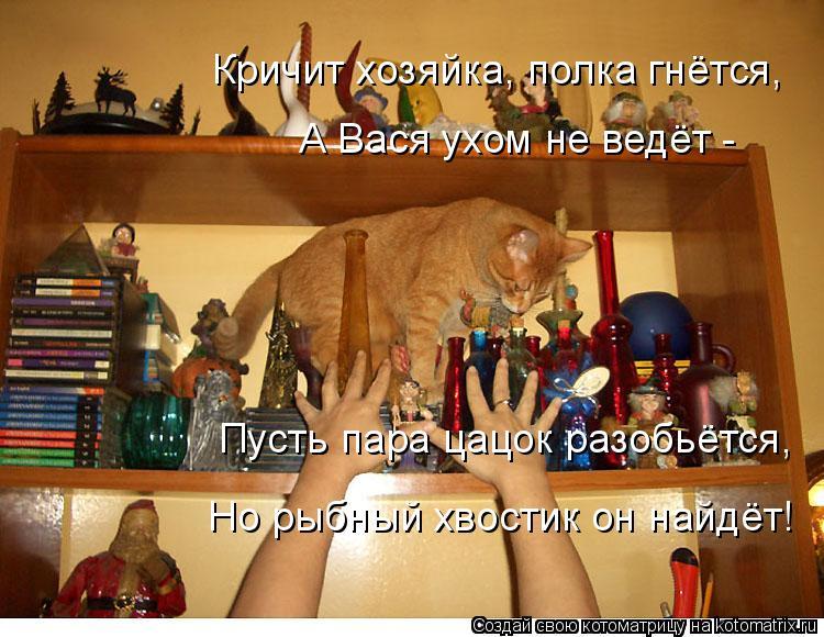 Котоматрица: Кричит хозяйка, полка гнётся, А Вася ухом не ведёт -  Пусть пара цацок разобьётся,  Но рыбный хвостик он найдёт!