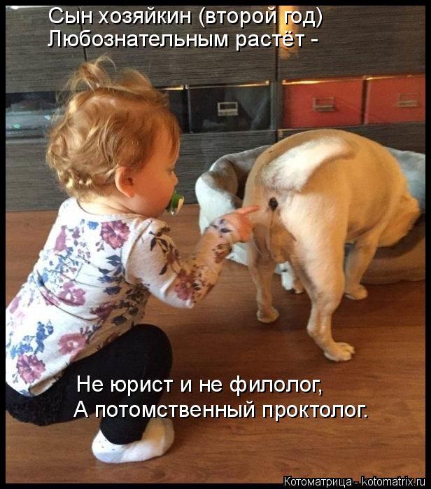 Котоматрица: Сын хозяйкин (второй год) Любознательным растёт -  Не юрист и не филолог,  А потомственный проктолог.
