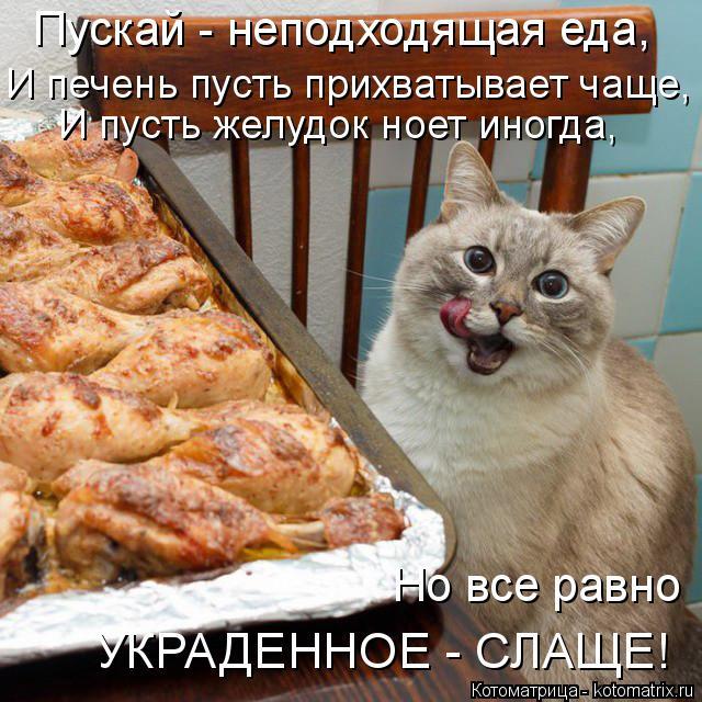 Котоматрица: Пускай - неподходящая еда, И печень пусть прихватывает чаще, И пусть желудок ноет иногда, Но все равно  УКРАДЕННОЕ - СЛАЩЕ!