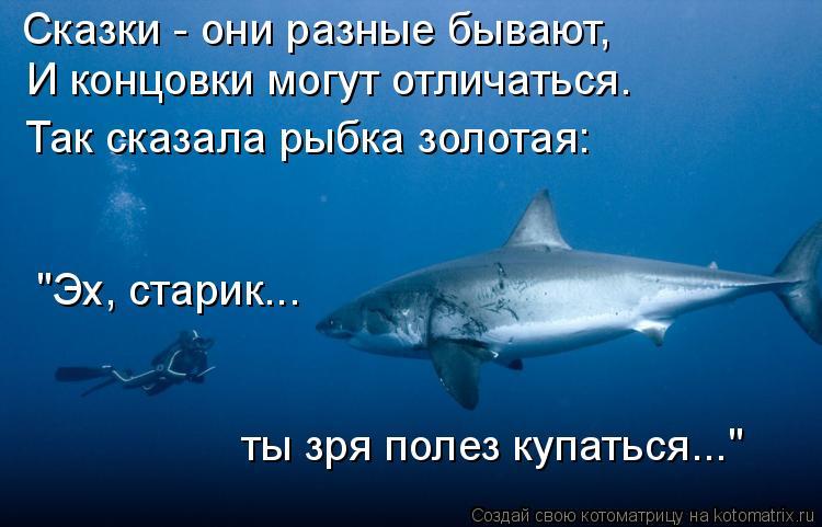 """Котоматрица: Сказки - они разные бывают, И концовки могут отличаться. Так сказала рыбка золотая: """"Эх, старик... ты зря полез купаться..."""""""