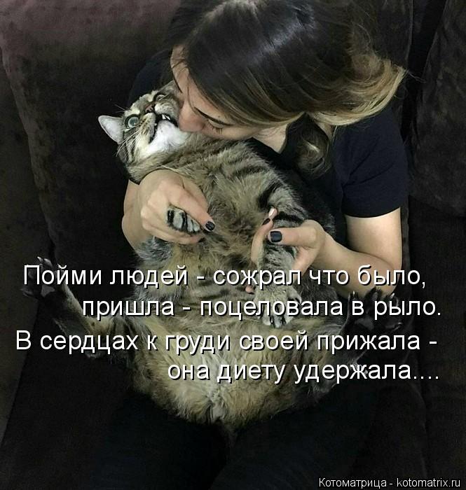 Котоматрица: Пойми людей - сожрал что было, пришла - поцеловала в рыло. В сердцах к груди своей прижала - она диету удержала....