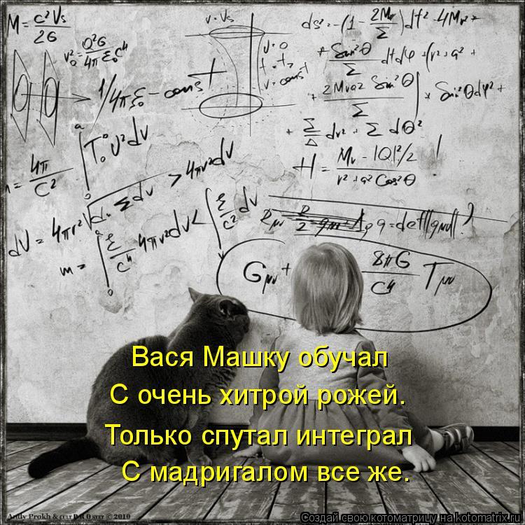 Котоматрица: Вася Машку обучал С очень хитрой рожей. Только спутал интеграл  С мадригалом все же.