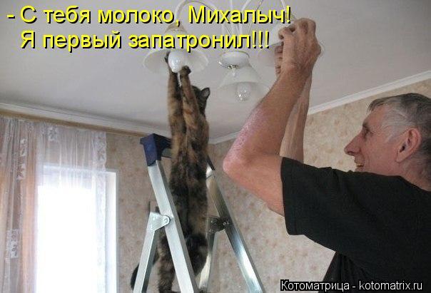 Котоматрица: - С тебя молоко, Михалыч! Я первый запатронил!!!