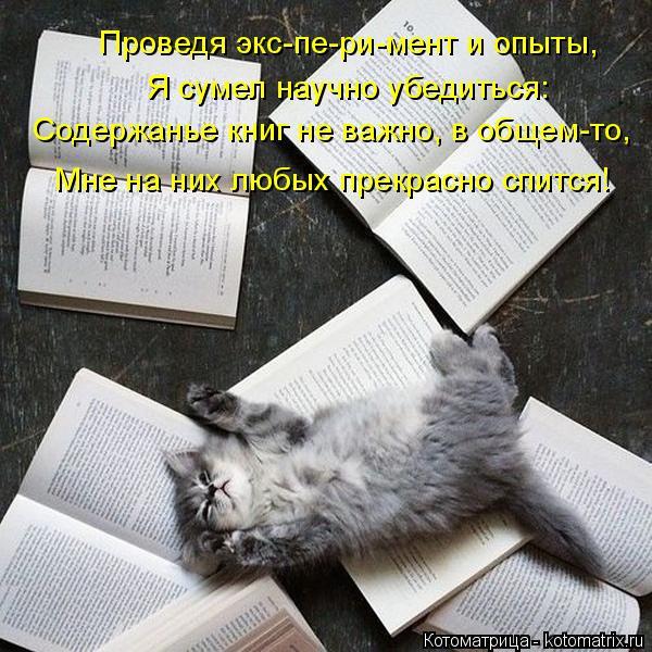 Котоматрица: Проведя экс-пе-ри-мент и опыты, Я сумел научно убедиться: Содержанье книг не важно, в общем-то, Мне на них любых прекрасно спится!