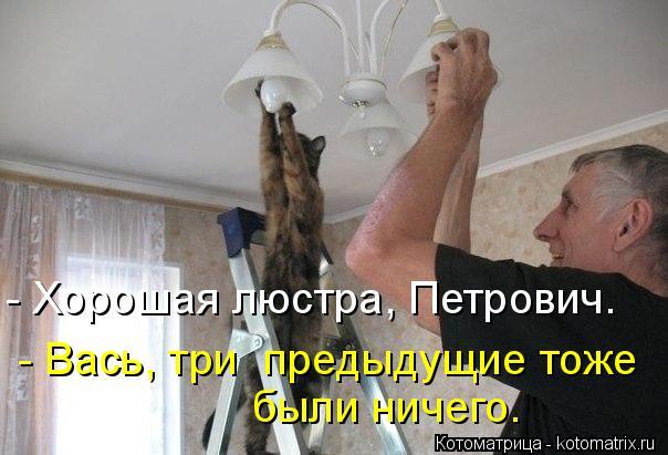 Котоматрица: - Хорошая люстра, Петрович. - Вась, три  предыдущие тоже были ничего.