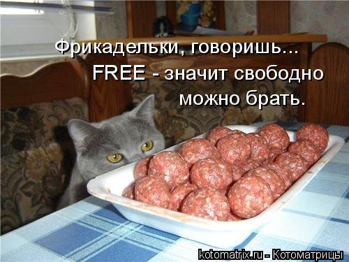 Котоматрица: Фрикадельки, говоришь... FREE - значит свободно можно брать.