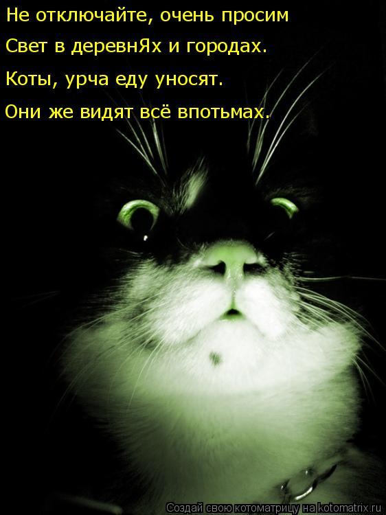 Котоматрица: Не отключайте, очень просим Свет в деревнЯх и городах. Коты, урча еду уносят. Они же видят всё впотьмах.