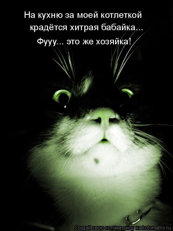 Котоматрица: На кухню за моей котлеткой  крадётся хитрая бабайка... Фууу... это же хозяйка!