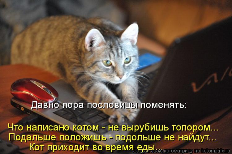 Котоматрица: Что написано котом - не вырубишь топором... Кот приходит во время еды... Давно пора пословицы поменять: Подальше положишь - подольше не найдут.