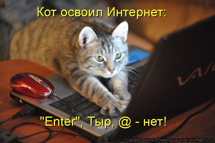 "Котоматрица: Кот освоил Интернет: ""Enter"", Тыр, @ - нет!"