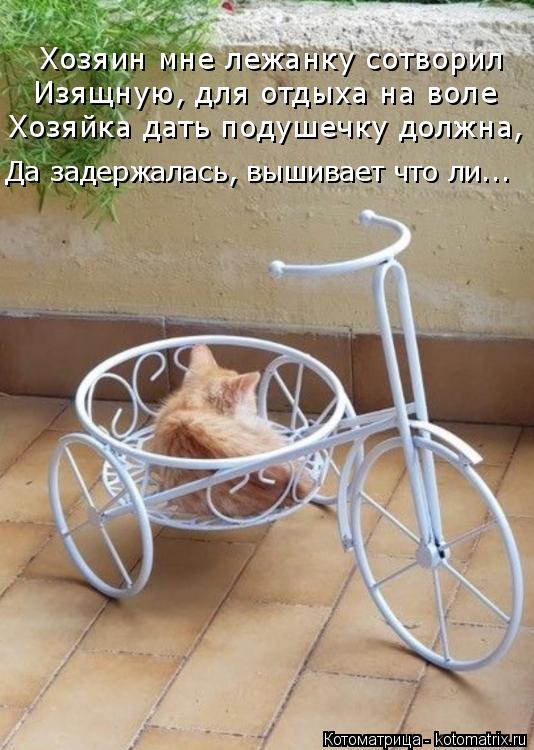 Котоматрица: Хозяин мне лежанку сотворил Изящную, для отдыха на воле Хозяйка дать подушечку должна, Да задержалась, вышивает что ли...
