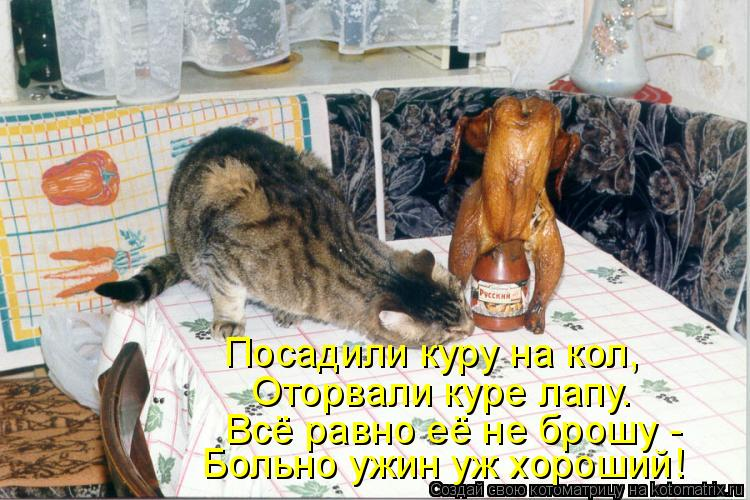 Котоматрица: Посадили куру на кол, Оторвали куре лапу. Всё равно её не брошу - Больно ужин уж хороший!