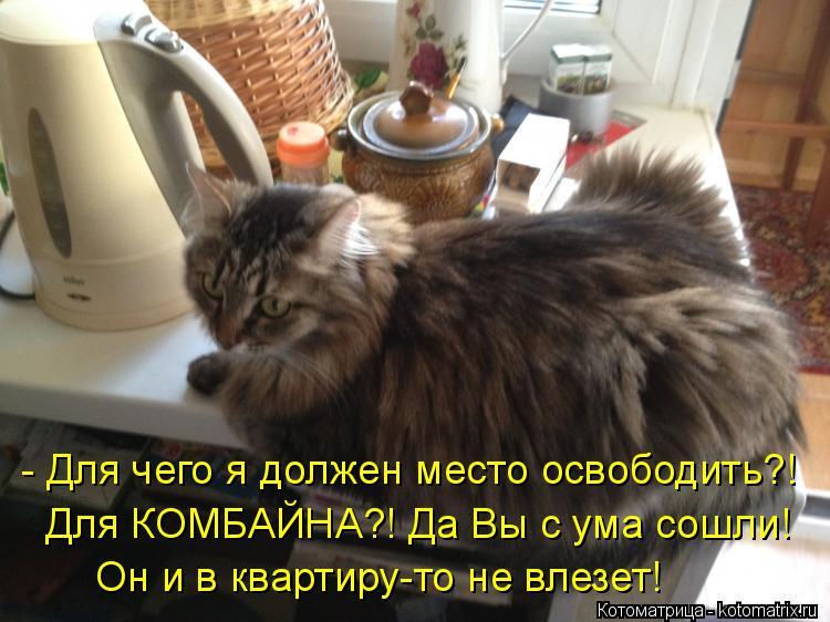 Котоматрица: - Для чего я должен место освободить?! Для КОМБАЙНА?! Да Вы с ума сошли! Он и в квартиру-то не влезет!