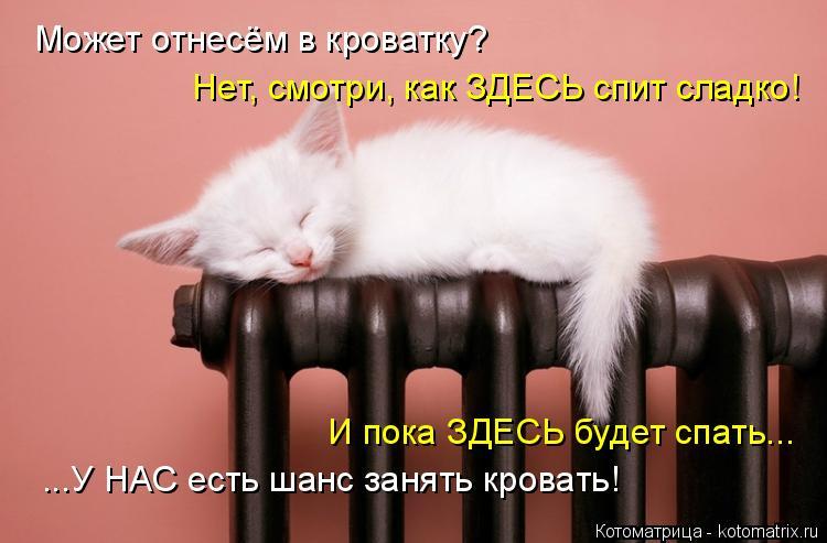 Котоматрица: Может отнесём в кроватку? Нет, смотри, как ЗДЕСЬ спит сладко! И пока ЗДЕСЬ будет спать... ...У НАС есть шанс занять кровать!