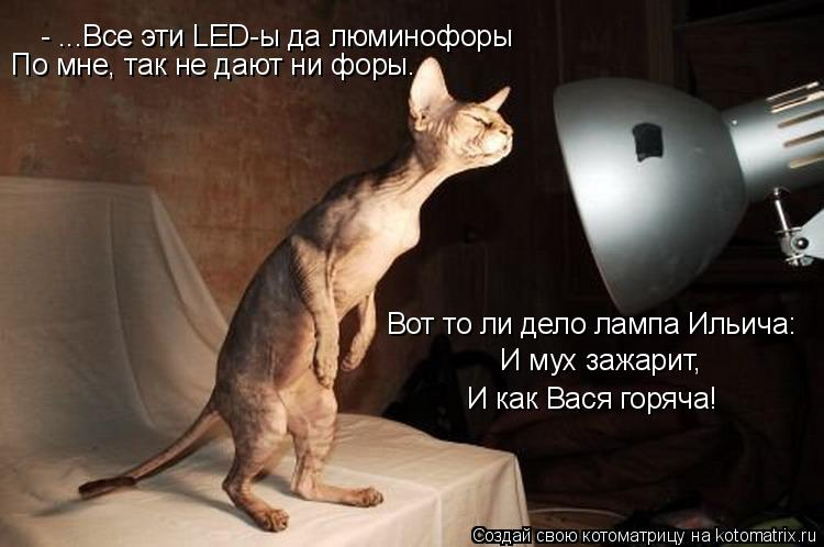 Котоматрица: - ...Все эти LED-ы да люминофоры По мне, так не дают ни форы. Вот то ли дело лампа Ильича: И мух зажарит, И как Вася горяча!