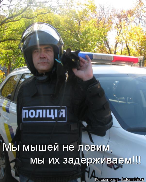 Котоматрица: Мы мышей не ловим, мы их задерживаем!!!