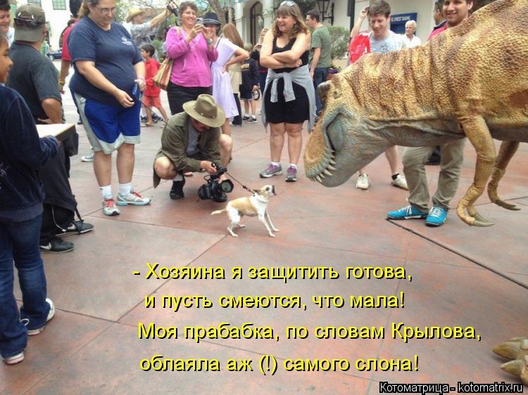 Котоматрица: - Хозяина я защитить готова, и пусть смеются, что мала! Моя прабабка, по словам Крылова, облаяла аж (!) самого слона!
