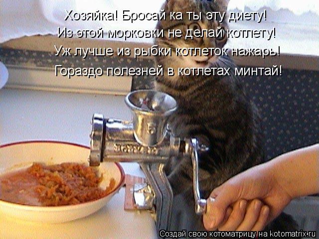 Котоматрица: Из этой морковки не делай котлету! Уж лучше из рыбки котлеток нажарь!  Гораздо полезней в котлетах минтай! Хозяйка! Бросай ка ты эту диету!