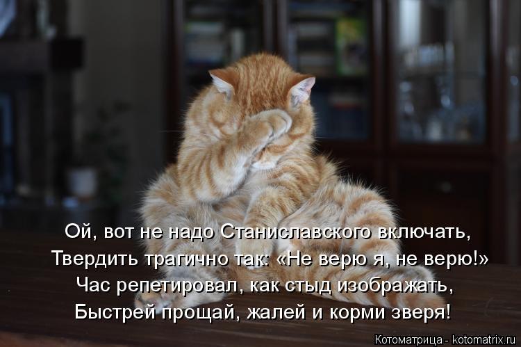 Котоматрица: Ой, вот не надо Станиславского включать, Твердить трагично так: «Не верю я, не верю!» Час репетировал, как стыд изображать, Быстрей прощай, жа